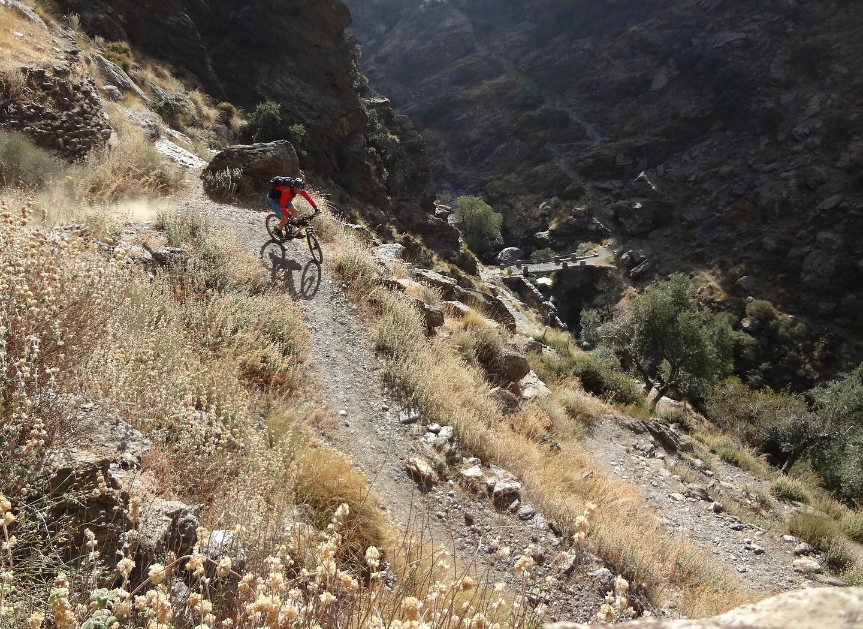 busquista-trail1.jpg