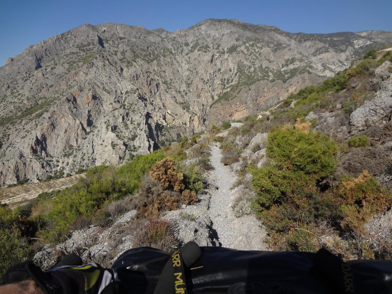 niguelas-trail.jpg
