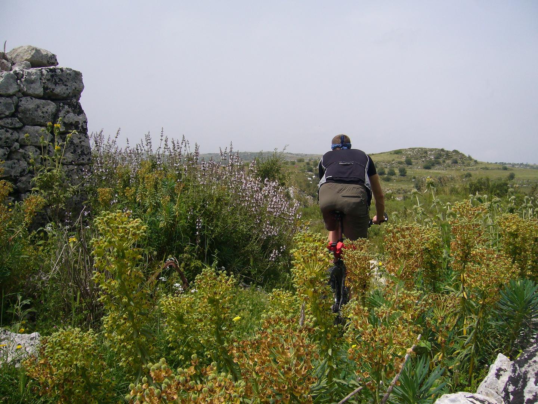 cassibile-trail.jpg