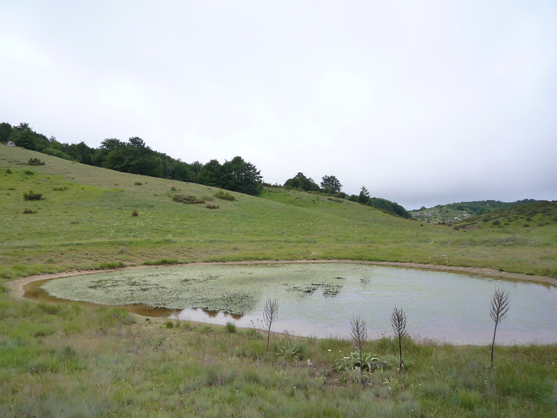 Ein wenig hoch runter durch karstige landschaft mit kleinen seen ein