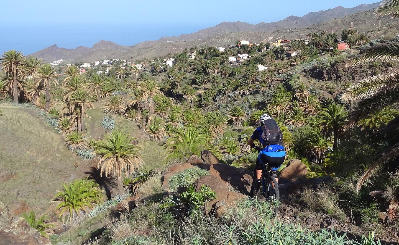 alojera-trail4.jpg
