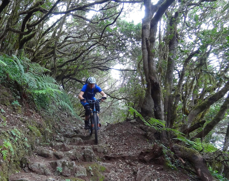 hermigua-trail3.jpg