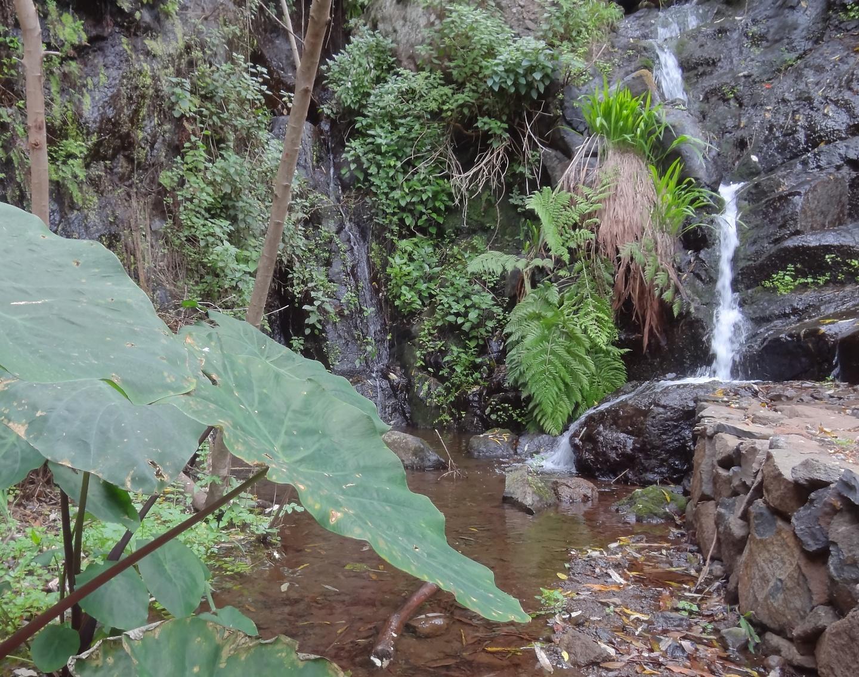 hermigua-waterfall2.jpg