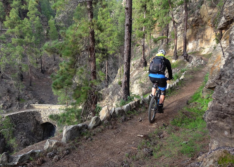 vilaflor-trail5.jpg