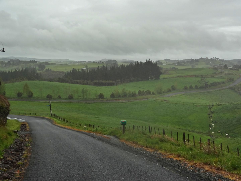 hunua-road1.jpg