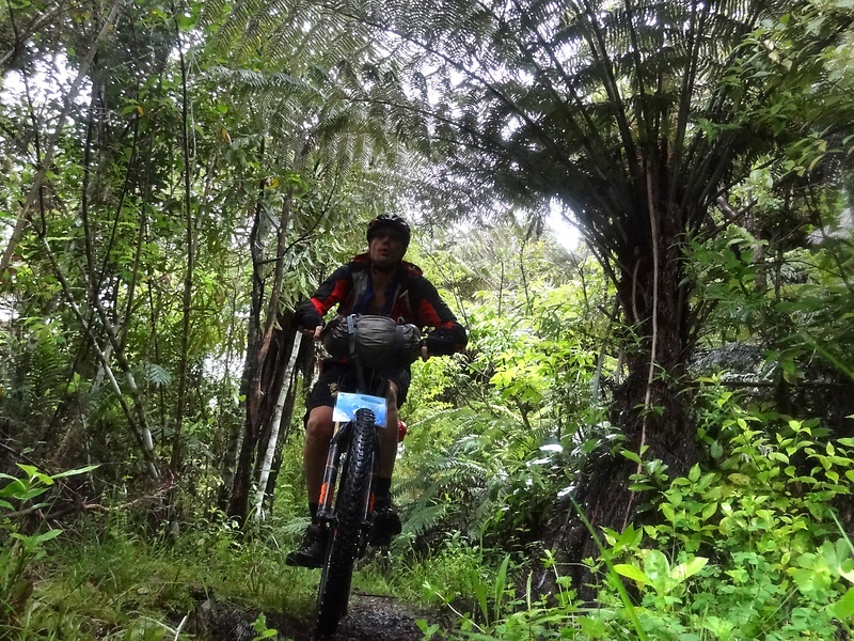 hunua-trail2.jpg