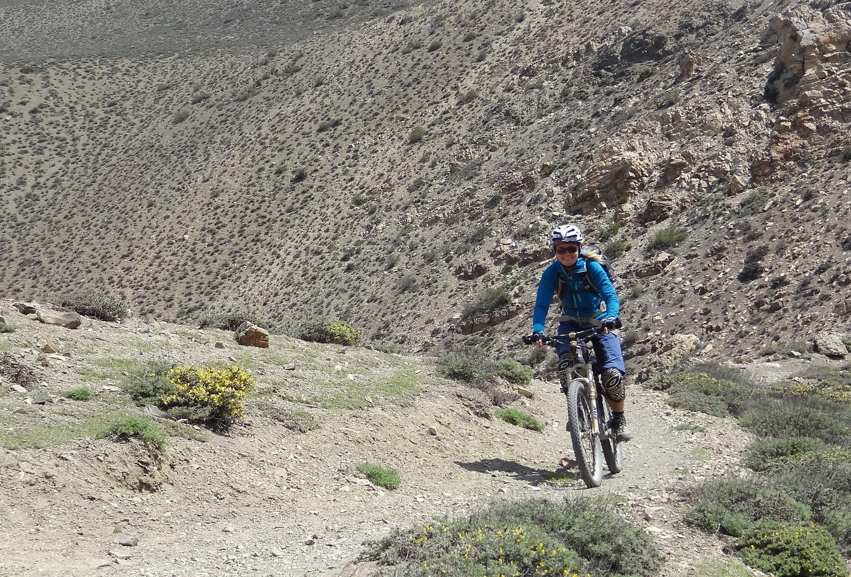 lupra-trail5.jpg