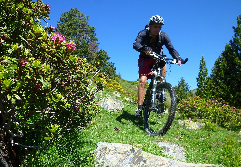 bonaigua-trail1.jpg