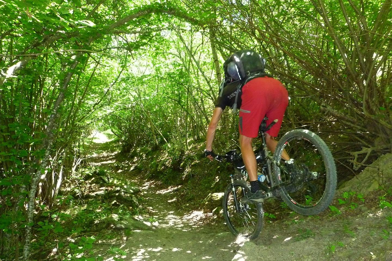 bonaigua-trail4.jpg