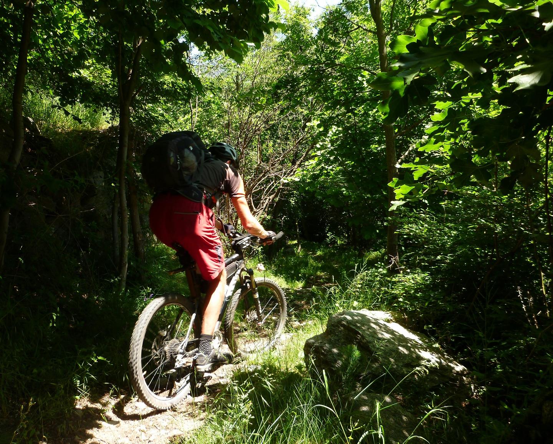 bonaigua-trail5.jpg