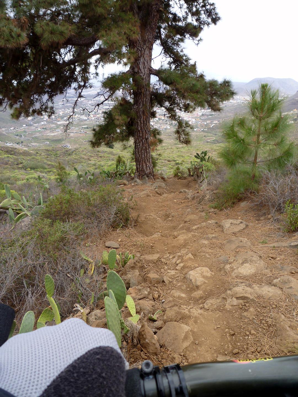 jama-trail6.jpg