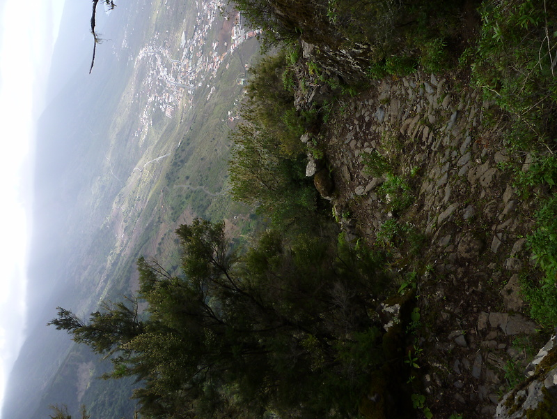 jimana-trail15.jpg