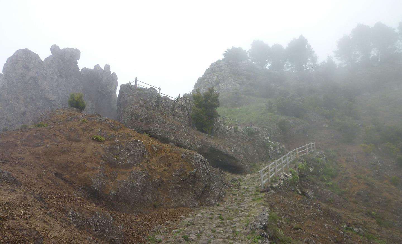 jimana-trail2.jpg