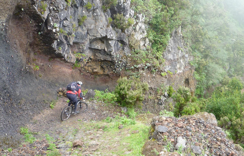 jimana-trail5.jpg