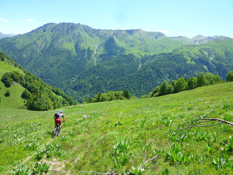 monjoie-trail4.jpg