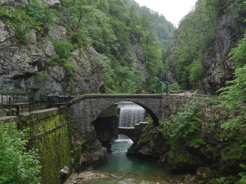chartreuse-gorge2.jpg