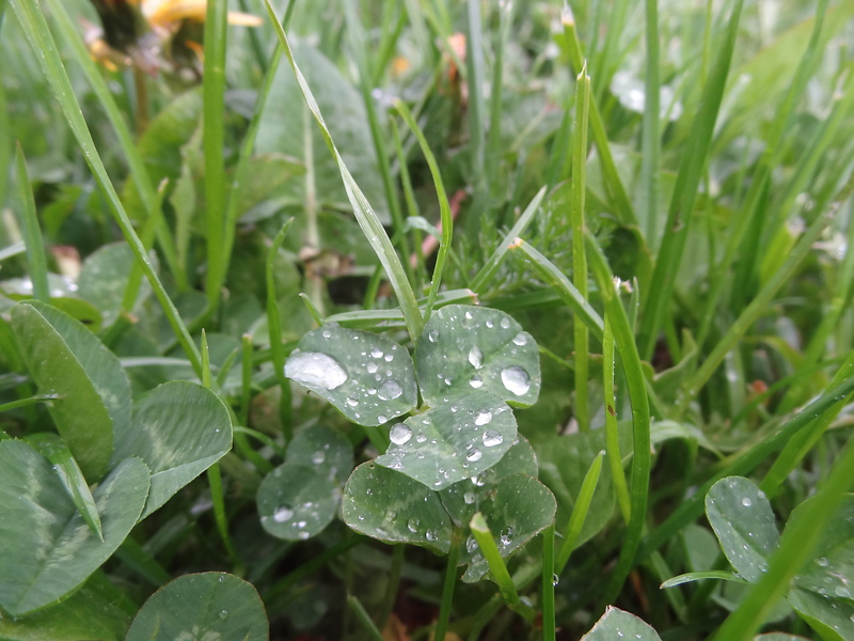 saleve-rain.jpg
