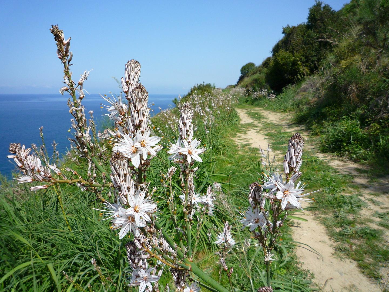 agropoli-trail3.jpg