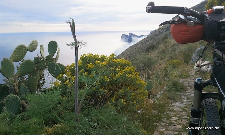 torca-trail1.jpg